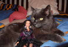 Salma s Turbíkom
