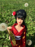 Barbie Dolls of the World Japan