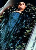 Star Wars Episode III : Padmé - Naboo Funeral - 2005/2006